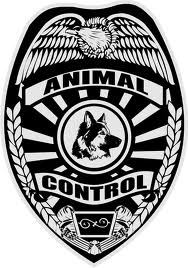 animal control badge